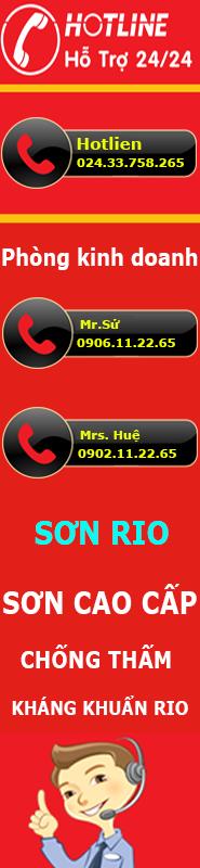 hotline-Rio.com.vn